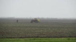 Endlose Felder bei Melitopol