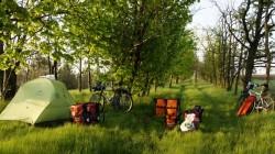 Zelten in den Baumreihen zwischen den riesigen Feldern in der Nähe von Mykolaiv