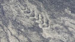 Abdruck von Christians Rad im weichen Asphalt. Bei 38 Grad Celsius weicht der Asphalt auf und bremst