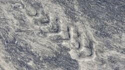 Aufgeweichter Asphalt in der Steppe vor Atyrau