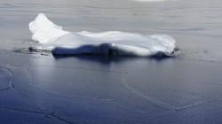 Eisschlolle auf dem Gletschersee